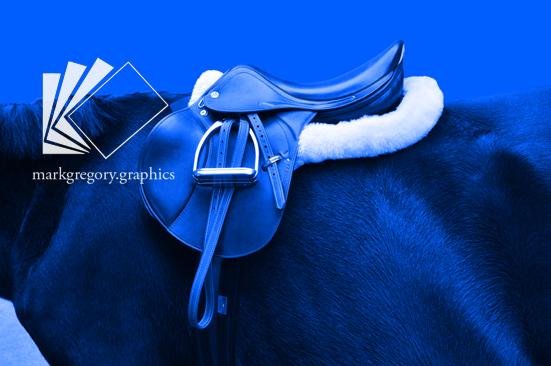 _DSC0646_freigestellt blau plus w